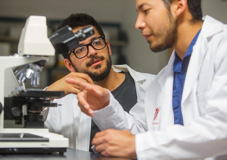 Biochemistry Degree - Lamar University