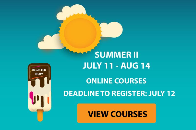 online-summer-courses-lrg2.png