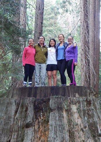 Five students on large tree stump