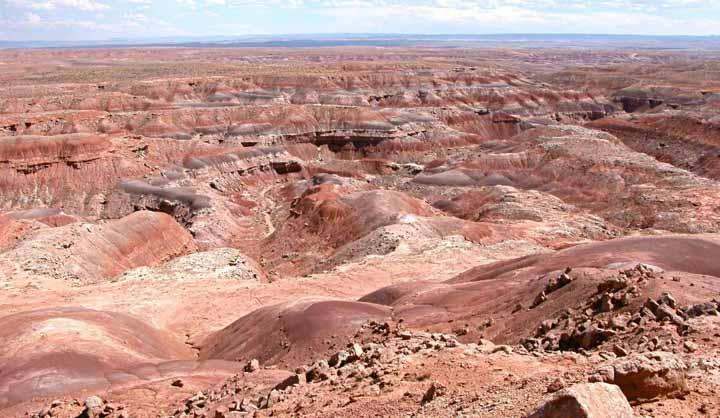 LU part of NSF grant to excavate in the Uinta Basin, Utah