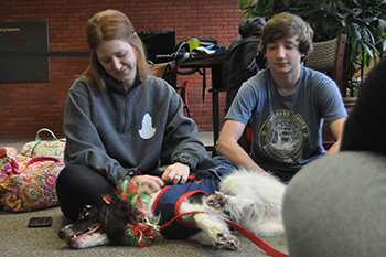Therapy dogs at Gray Library