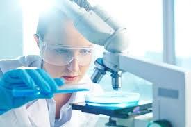 LU Researcher