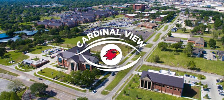 cardinal view