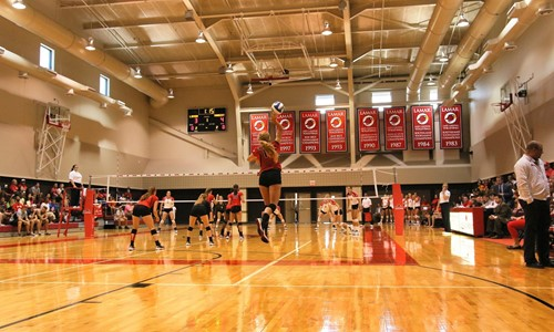 Student Life Athletics Lamar University