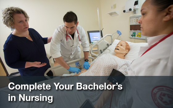 Bachelors in Nursing