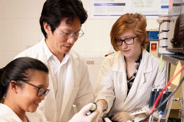 Research conducted at LU enhances disease diagnosis